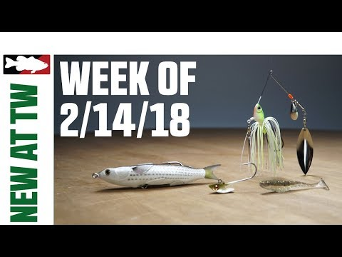 What's New at Tackle Warehouse w. Aaron Quarles - 2/14/18