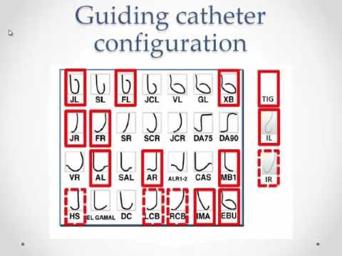 Guiding catheters