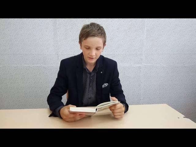 Изображение предпросмотра прочтения – ВячеславДиденко читает произведение «Цифры» И.А.Бунина