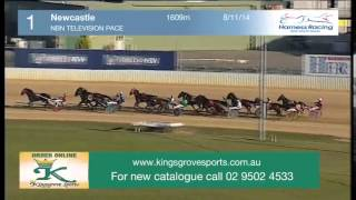 NEWCASTLE - 08/11/2014 - Race 1 - NBN TELEVISION PACE
