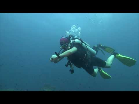 Mindoro isl. Philippines dive trip.