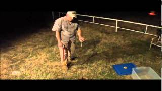 Watch the Strike! Western Diamondback Rattler Handling - Wichita Falls Reptile Rescue