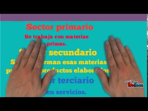 LOS SECTORES ECONÓMICOS PARA EDUCACIÓN PRIMARIA - YouTube