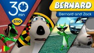 Bernard Bear | Bernard and Zack's Adventures | 30 minutes
