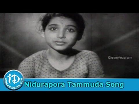 Santhanam Movie Songs - Nidurapora Tammuda Song - S.Dakshina Murthy Songs