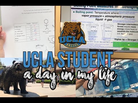 Follow me around: UCLA Student l MY NEW LAB JOB, MIDTERM GRADE REVEAL, & SUMMER CLASSES