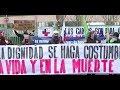 Funcionarios del San José protestan para exigir hospital modular y retiro de carpa