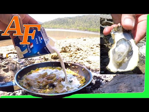 Catch and Cook Gourmet Oyster Stew recipe w Oyster Mushrooms super simple n delicious EP.396