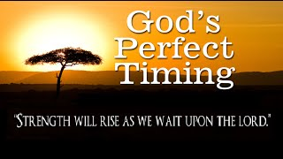 Waiting on God's Timing...It's Worth It! Daily Devotional for Women