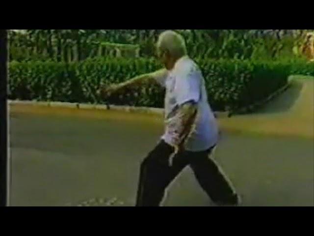Hong Jun Sheng - Tai Chi style Chen Xinjia Erlu [陈氏太极拳新架 Taijiquan style Chen]
