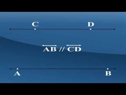 เส้นขนานและมุมแย้ง คณิตศาสตร์ ม.1