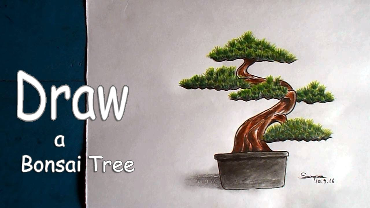 How To Draw A Bonsai Tree With Pencil Draw A Bonsai Tree Step By Step Youtube