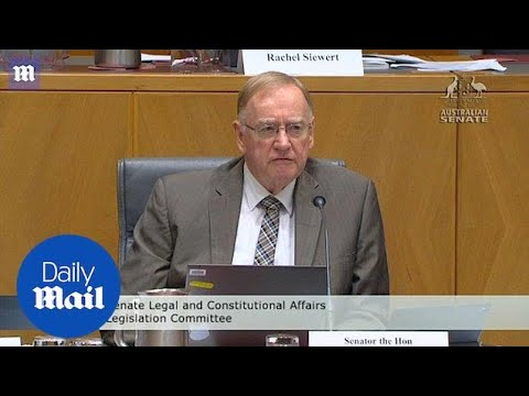 Liberal senator believes racism is 'very rare' in Australia