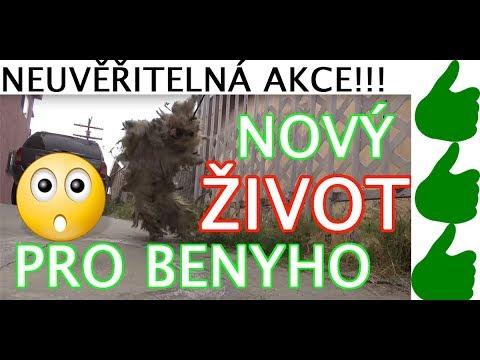 Záchrana Iris PŘEKVAPENÍ! :-) from YouTube · Duration:  4 minutes 29 seconds