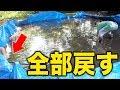 100トンの泥水を全部池に戻す【ポツンと一軒家の池の水全部抜く#5】