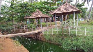Индия, Влог 11/21 - Пляж Варкала, рачки, крабики, Храм Дженадхарна...
