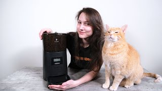 Petlibro Easy Feed 6L Automatic Pet Feeder Review (We Tried It For 2 Weeks)