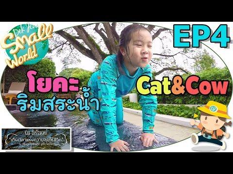 เด็กจิ๋ว โยคะ Cat&Cow ริมสระน้ำ (ณ นิรันดร์ เชียงใหม่ Ep4) - วันที่ 10 Jul 2018