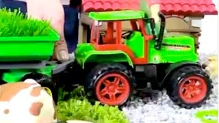 Tractors for kids - Videos for kids - Farm life - Domestic animals