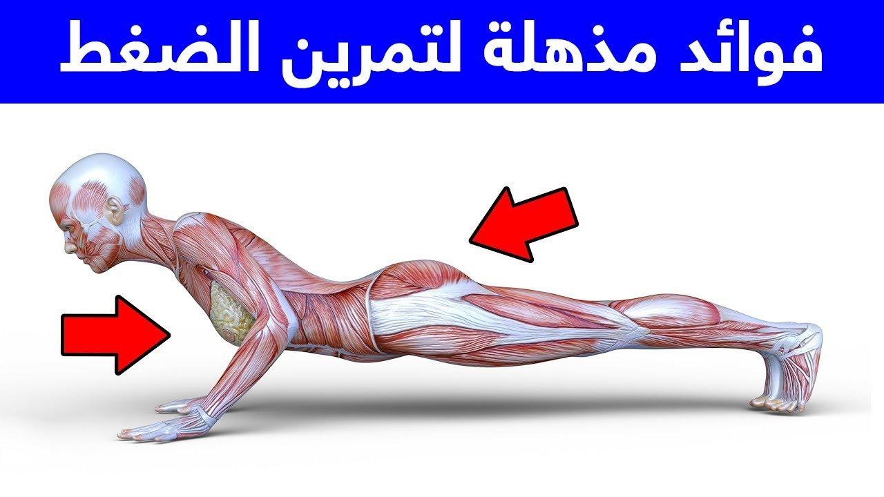هل تعلم أن ممارسة تمارين الضغط يومياً ..  سيحدث لجسمك تغيير جذري !
