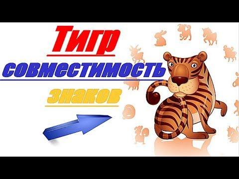 Тигр совместимость знаков