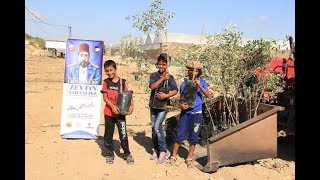 Türkiye'den Gazze'ye Zeytin Fidanlığı