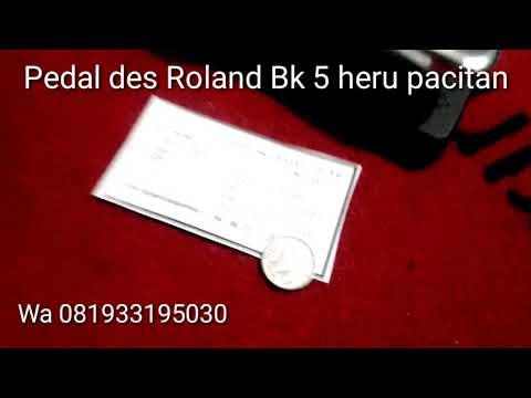 Pedal des Roland BK 5 wa 081933195030