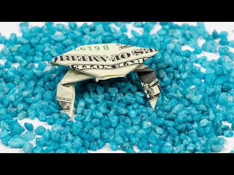 Money Origami Fish Tank 🦀 Dollar Origami CRAB Folding
