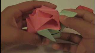 Origami, Rosa Cubo