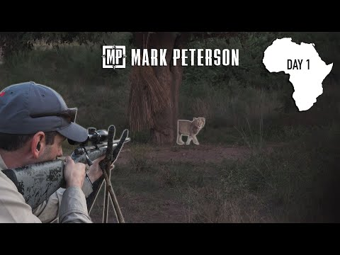 Lion Hunting Zambia: Day 1 – Baiting & Building Machon | Mark Peterson Hunting