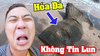 Phát Hiện Đuôi Nàng Tiên Cá Hóa Đá Trên Đảo Hoang - Thạc Đức Vlog