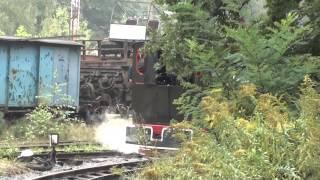 (14.09.14) Parowóz Las z pociągami do Paproci i Stanicy