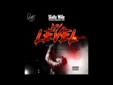 Shatta Wale - My Level (Audio Slide)
