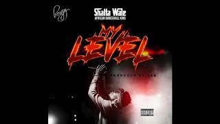 Shatta Wale - My Level (Audio Slide)