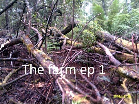 the farm day 1