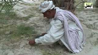 Repeat youtube video Balochi Film Mehruk part 2