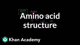 Amino acid structure | Chemical processes | MCAT | Khan Academy