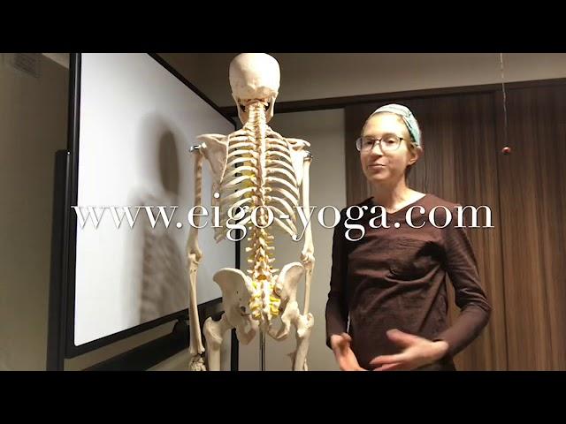 English yoga lesson: Movement along the axis