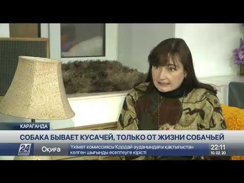 Выпуск новостей 22:00 от 10.02.2020