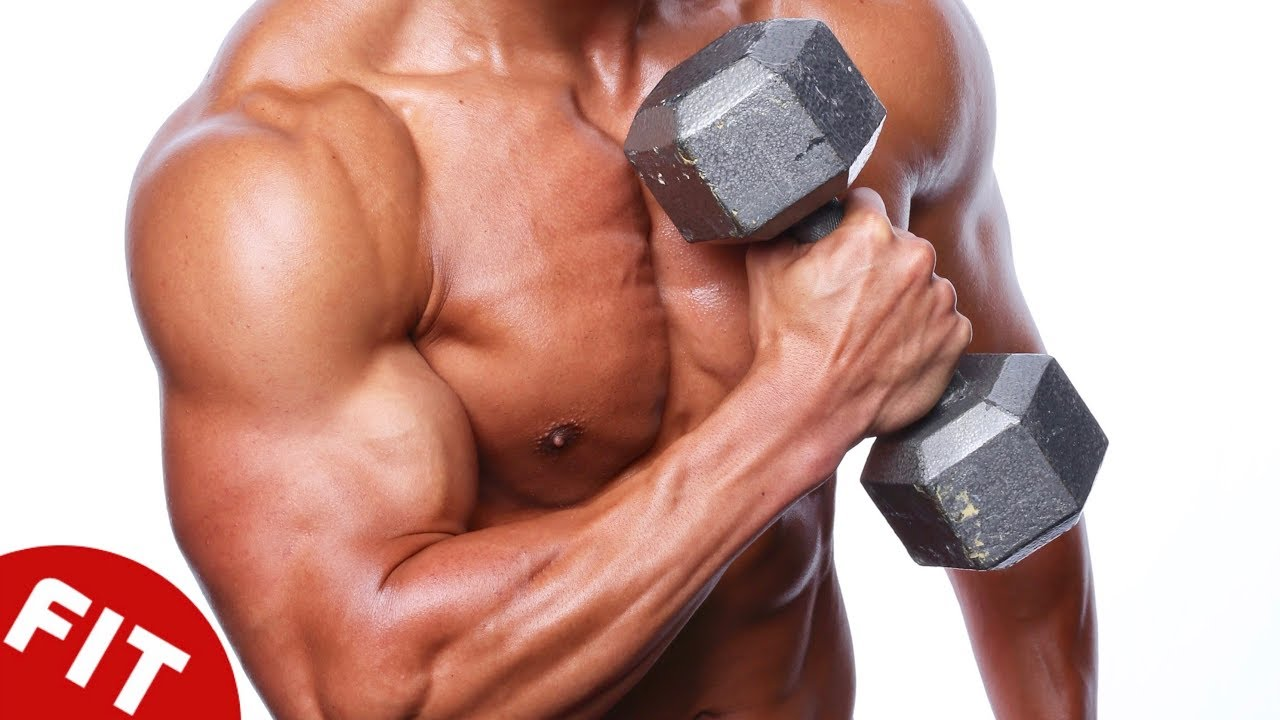10 Best Muscle Building Exercises Youtube