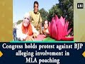 Congress holds protest against BJP alleging involvement in MLA poaching
