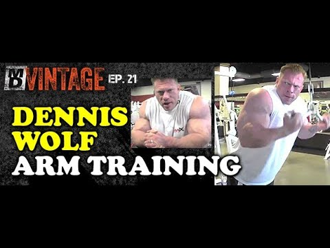 MD VINTAGE - DENNIS WOLF - ARMS | E21