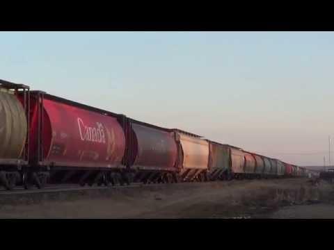 CN Grain Train Togo Sub.