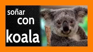 Soñar con Koala 🐨 ¿A dónde te diriges? Piénsalo bien...