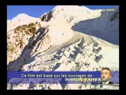 006 - Selon le Coran que signifie être arrogant?