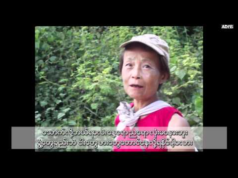 Challenges of Change: Dawei Deep Sea Port and SEZ Development Project - ADFB (in Burmese)
