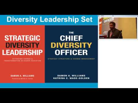 Strategic Diversity Leadership Strategies and Imperatives for Academic Health Centers