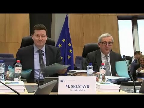 Selmayr-gate: EU Commission 'broke own rules' in Selmayr appointment