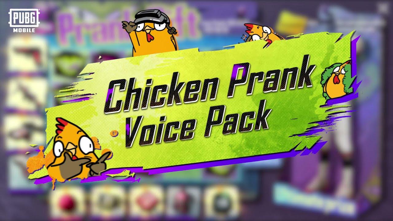 Pek suara ayam dalam PUBGM? 🎤🐔 | PUBG MOBILE MALAYSIA