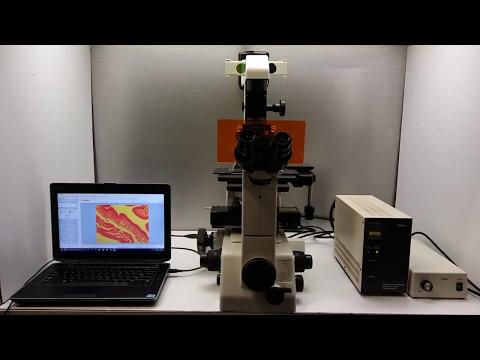 Nikon TE300 Microscope Inverted Pred. to Eclipse TE2000 or Ti - 11768